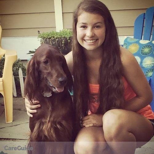 Pet Care Provider Abby Hulbert's Profile Picture