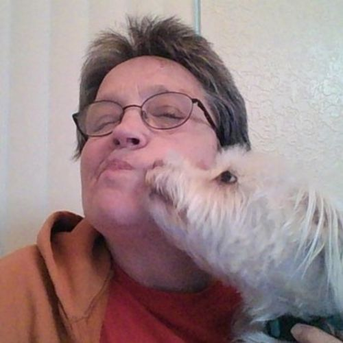 Pet Care Provider Pat Lee's Profile Picture