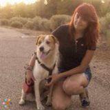 Dog Walker, Pet Sitter in Santa Fe