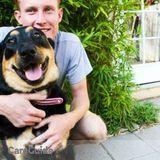 Dog Walker, Pet Sitter in Culver City