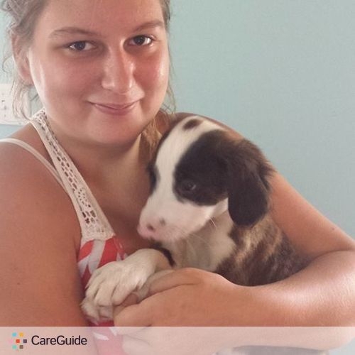 Pet Care Provider Krystyn Matos's Profile Picture