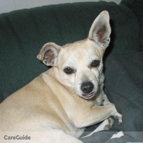 House Sitter Provider Dali Moyzes's Profile Picture