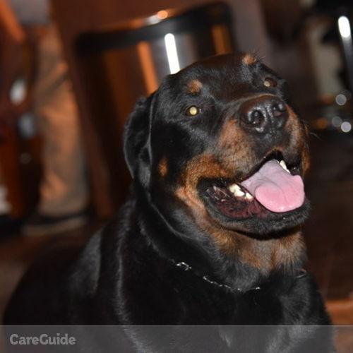 Pet Care Provider Monika Lavoie's Profile Picture