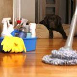 Housekeeper in Calgary