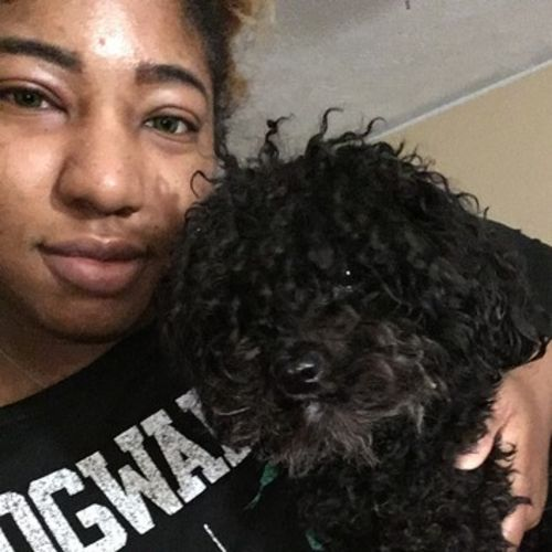 House Sitter Provider Jazmin G's Profile Picture