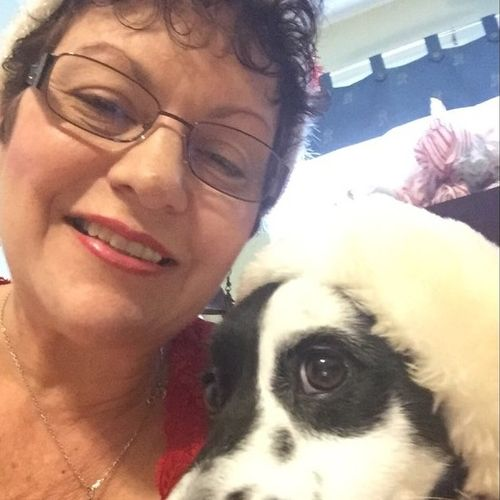 Pet Care Provider Arleen Gross's Profile Picture