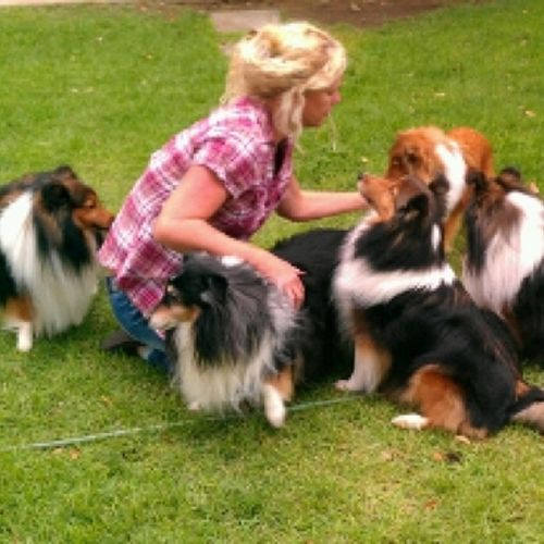 Pet Care Provider Cyndi Campbell Gallery Image 2