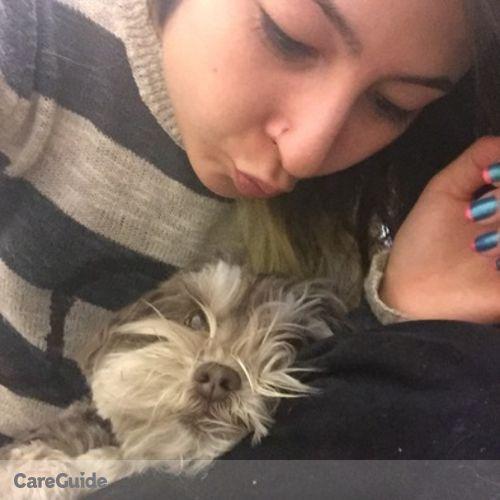 Pet Care Provider Rachel Z's Profile Picture