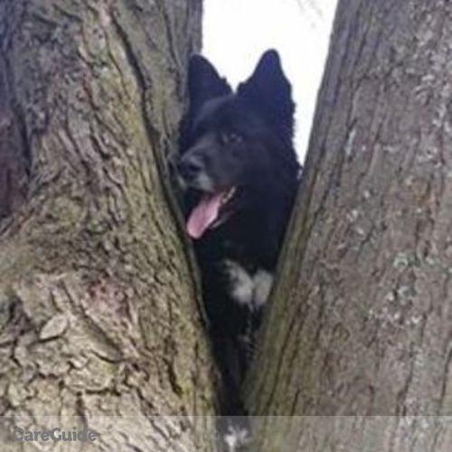 Pet Care Provider Sandra Rothman's Profile Picture