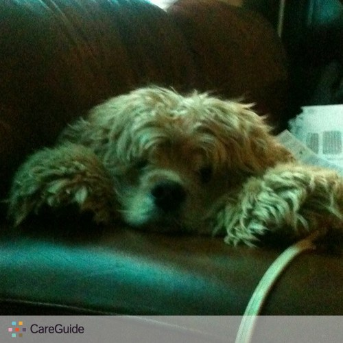 Pet Care Provider Jennifer Mills's Profile Picture