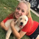 Searching for a pet sitting/walking oppurtunity in Amherst, Ohio