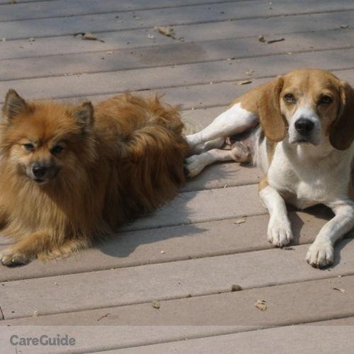 Pet Care Job Virginia Moran's Profile Picture
