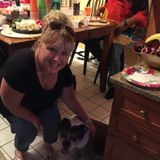 Pet sitter- keeping them comfortable in their own surrounding