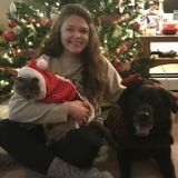 Responsible pet sitter and vet assistant located in Minneapolis/St. Paul