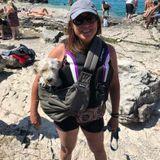 Flexible Pet walker for hire