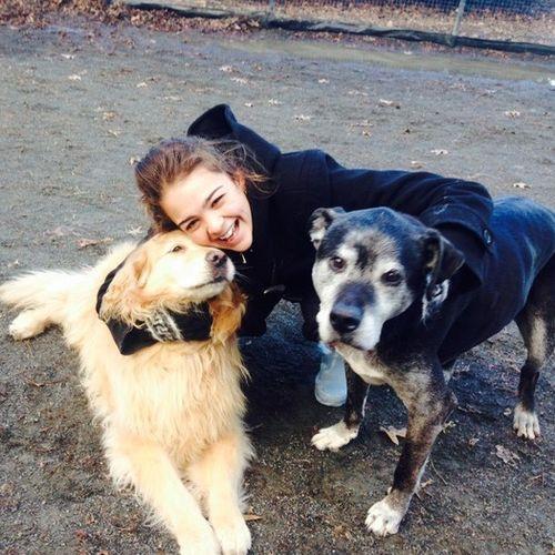 Pet Care Provider Melanie d Gallery Image 3