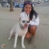 Dog Walker, Pet Sitter in Santa Monica