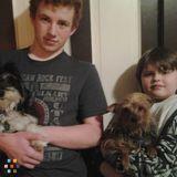 Dog Walker, Pet Sitter, Kennel in Appleton