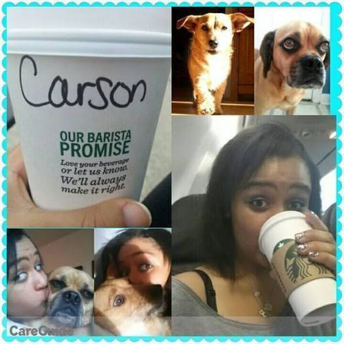 Pet Care Provider Carson Spence's Profile Picture