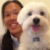 Pet Sitting and volunteer at animal shelters in Hawaii and Japan