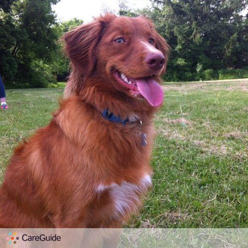 Pet Care Provider Natasha Kibbe's Profile Picture