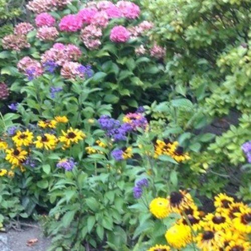 Gardener Provider Maureen R Gallery Image 3