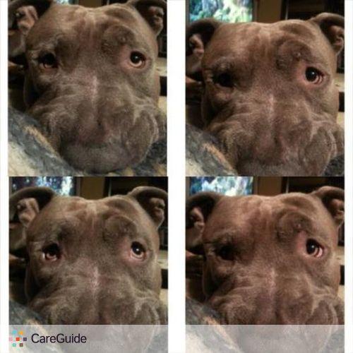 Pet Care Provider Felcia M's Profile Picture