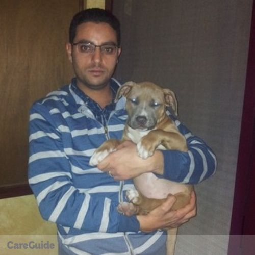 Pet Care Provider Ahmed Aboul Ella's Profile Picture