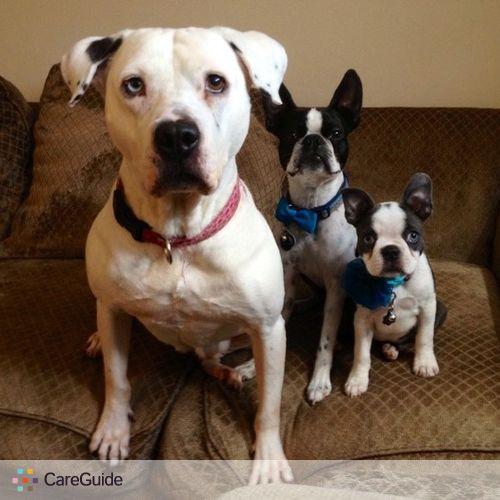 Pet Care Provider Elizabeth G's Profile Picture