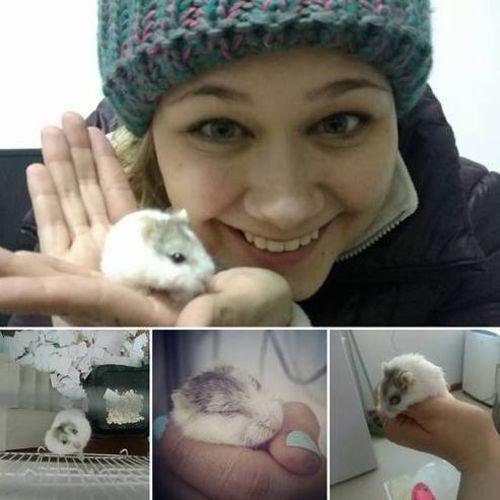 Pet Care Provider Danielle W Gallery Image 2