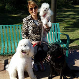 Wonderful Cat and Dog Sitter in Tulsa