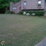 Magnems Landscaping & Handyman Service!