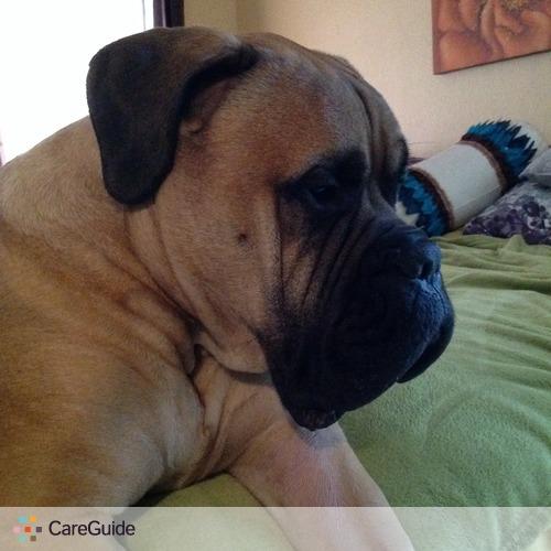 Pet Care Provider Lyndsey Daniel's Profile Picture