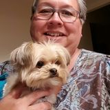 Pet/home sitter, experienced, reliable and mature.