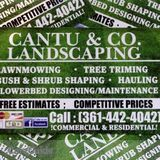 Cantu & Co. Landscaping