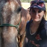 Experienced animal lover, from Horses to mice, and everything in between!