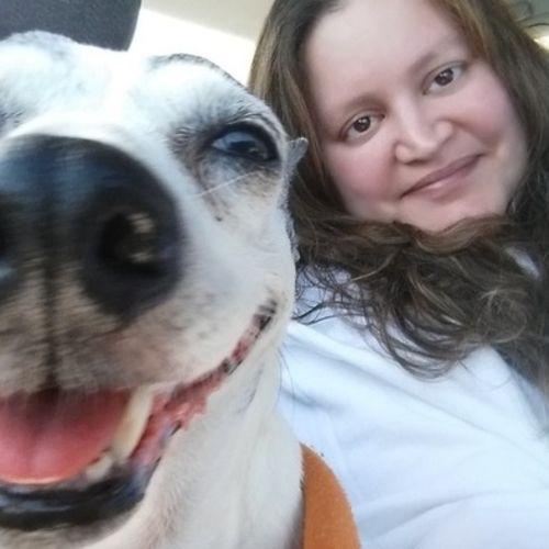 Pet Care Provider Kristen L's Profile Picture