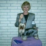 Dependable and Experienced Pet Sitter