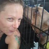 Astatula Pet Sitter Looking For Being Hired in Florida