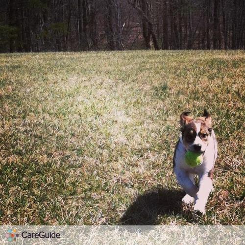 Pet Care Provider Laurin Elliott's Profile Picture