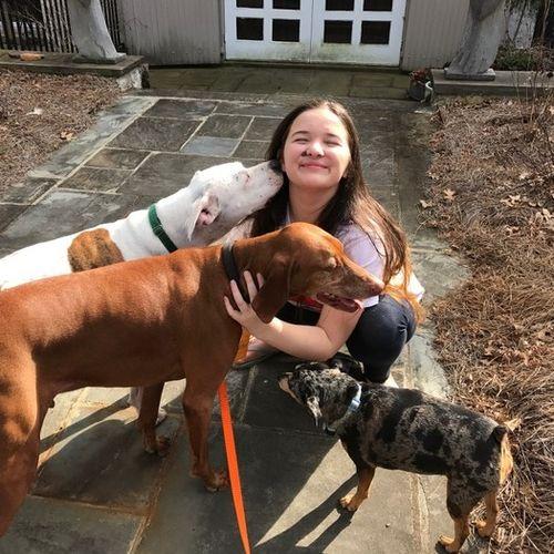 Pet Care Provider L B's Profile Picture