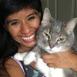 Interviewing For Milledgeville Pet Groomer, Georgia Jobs