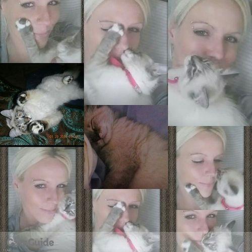 Pet Care Provider Shirley A's Profile Picture