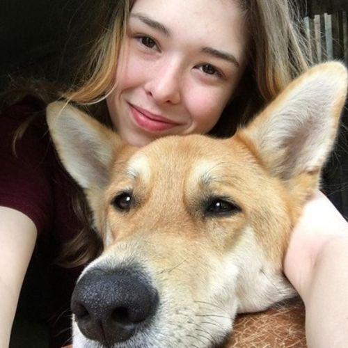 Pet Care Provider Megan Packard's Profile Picture