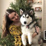Dog walker, and Pet sitter