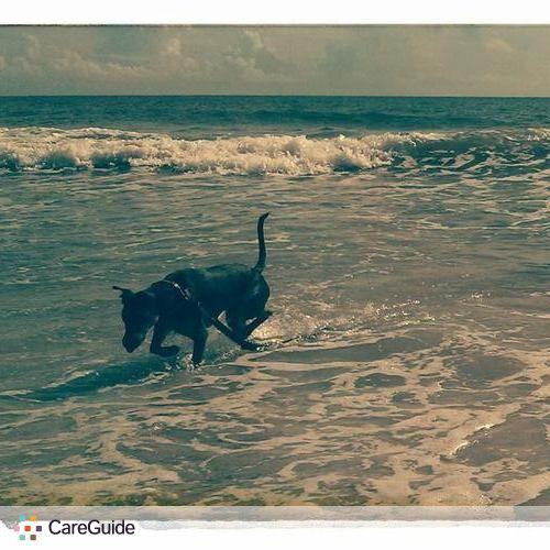 Pet Care Job K Leszczak's Profile Picture