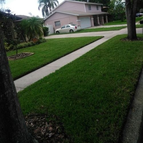 Landscaper Provider Nelson G Gallery Image 1