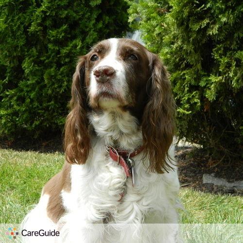 Pet Care Provider Connor Warde's Profile Picture
