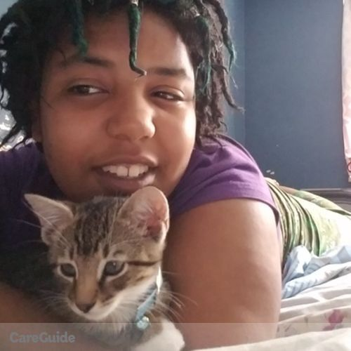 Pet Care Provider Ciara Andino's Profile Picture