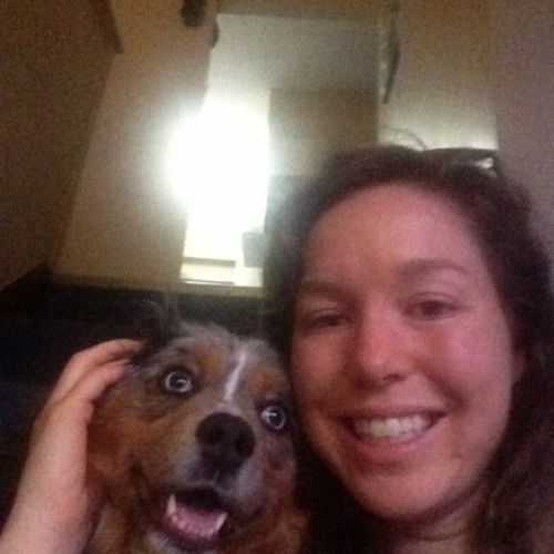 Pet Care Provider Courtney Sparks's Profile Picture